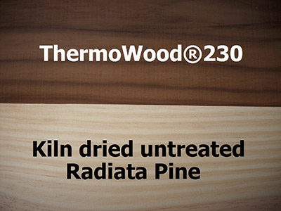 ThermoWood-vs-Untreated-2